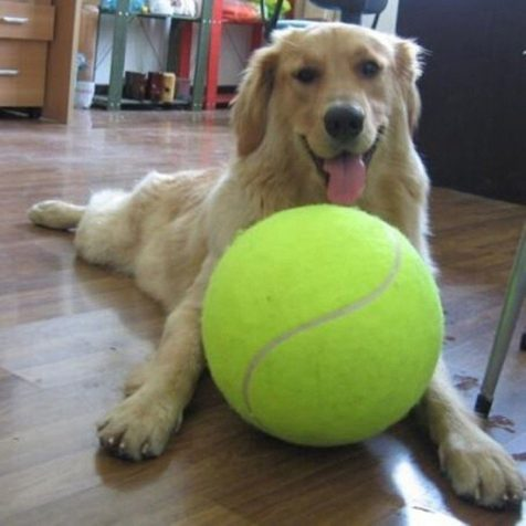 24cm Dog Giant Tennis Ball Toy